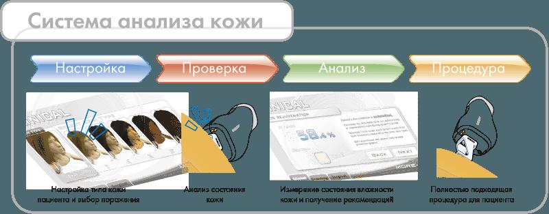 more-xel курск