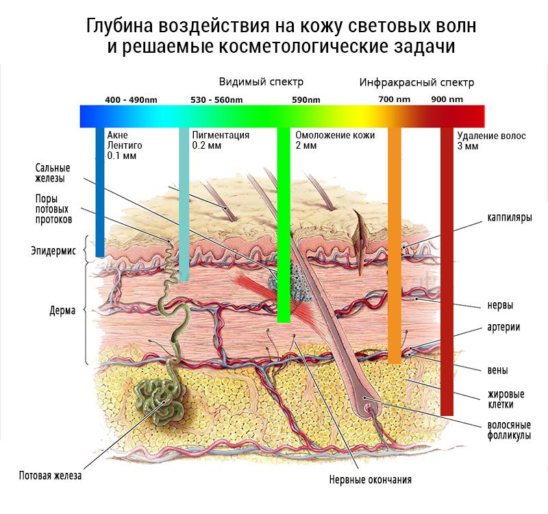 Воздействие лазерной эпиляции курск